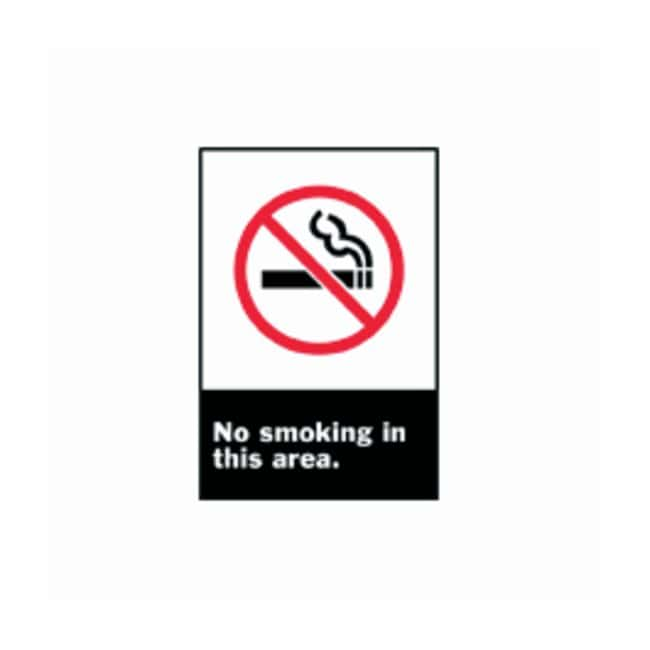 Brady™ ANSI Z535 Safety Signs: No Smoking In This Area