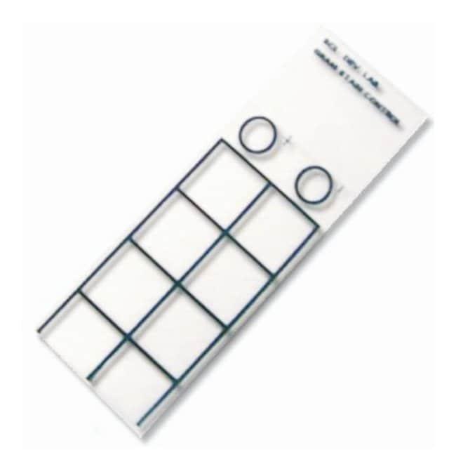 Scientific Device Laboratory Gram Stain Control Slides 50/Pk.:Diagnostic