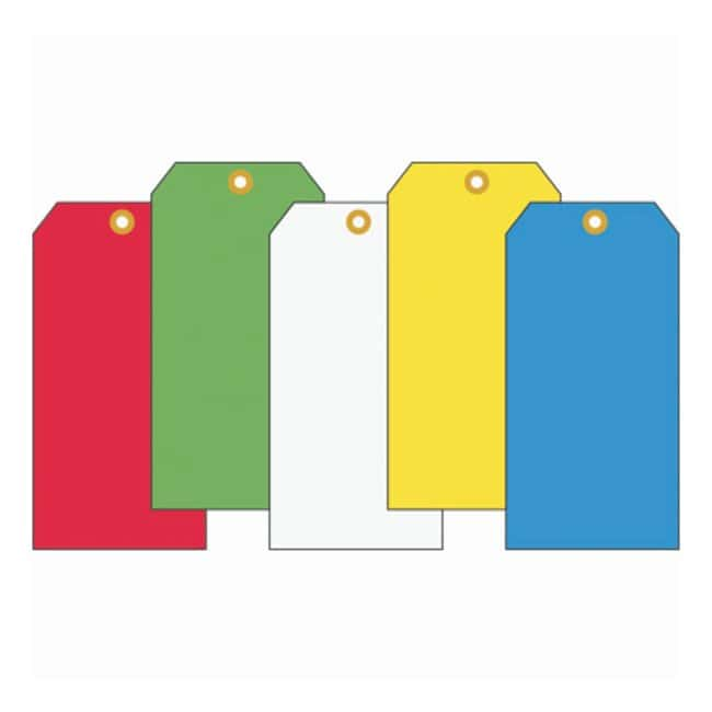 Accuform Signs Color Blank Tags Red; Hole looped with 12 in. galvanized