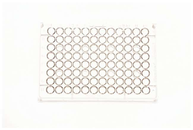Thermo Scientific 96-Well Microtiter Microplates :Dishes, Plates and Flasks:Microplates