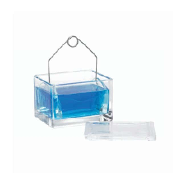 DWK Life Sciences Wheaton Cover for Glass Staining Dish For 20 slide racks:Histology