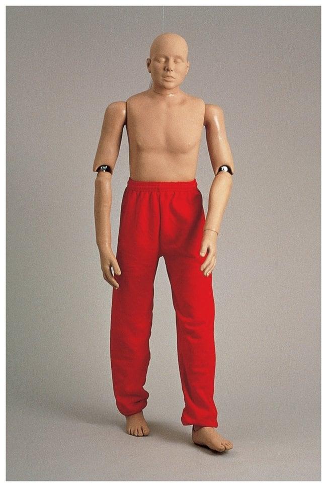 SimulaidsRescue Randy Manikin Rescue Randy Adult Manikin:First Aid and