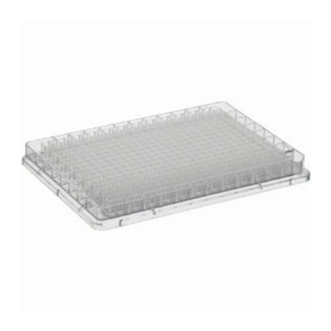 BRAND&trade;&nbsp;BRAND<i>plates</i>&trade; immunoGrade&trade; 384-Well Microplates Volumen de pocillo: 100&mu;l; transparente Ver productos