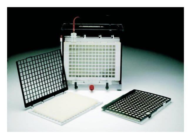 GE Healthcare TE 62 Transfer Unit Accessory: Foam Sponges  Foam sponge;