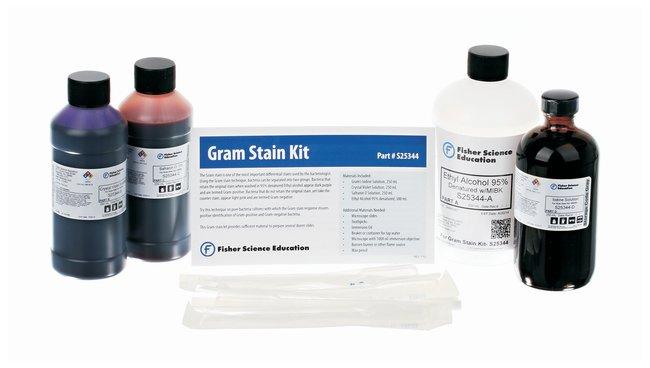 Fisher Science Education Gram Stain Kit  4 x 250mL bottles:Teaching Supplies