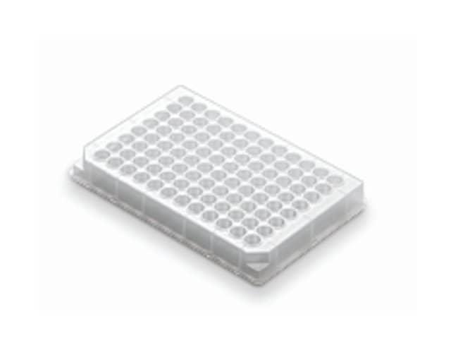 Axygen™Storage Microplates 96-well assay; V-bottom plate; Blue; 500μL Axygen™Storage Microplates