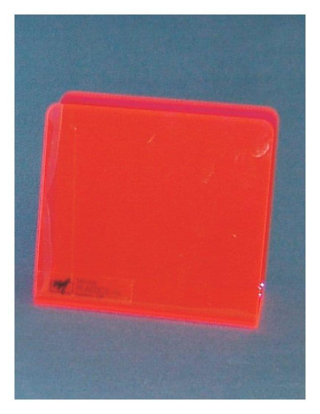 Mitchell Plastics Single Blood Bag Holders Neon red; Pack of 12:Racks,