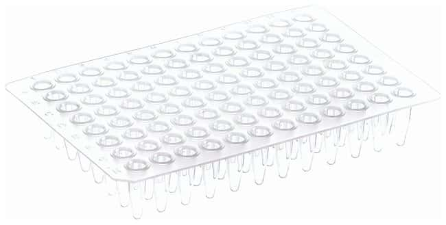 Thermo Scientific™ 96-Well Non-Skirted Plates: PCR Plates PCR and qPCR