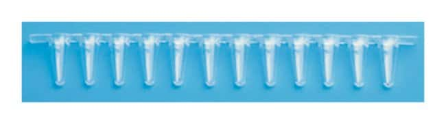 Thermo Scientific Low Profile Tubes and Flat Caps :Life Sciences:Molecular