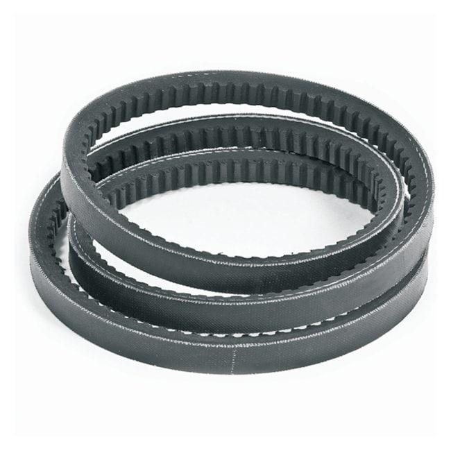 WelchDuoSeal High-Vacuum Pumps: Replacement Belt Standard Belt; For Welch