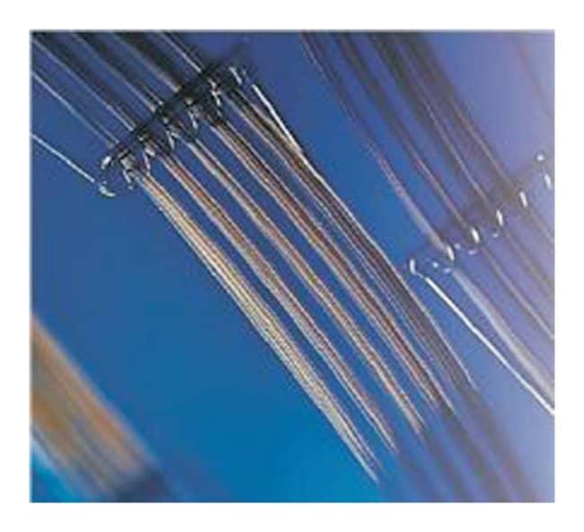 Trajan™BPX35 GC Capillary Column I.D.: 0.32mm; Length: 30mm Trajan™BPX35 GC Capillary Column