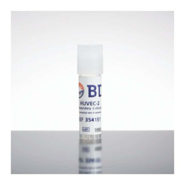 Corning™Laminin/Entactin High Concentration Extracellular Matrix Protein 10.5 mg; Laminin Entactin, High Concentration Custom Purified Proteins