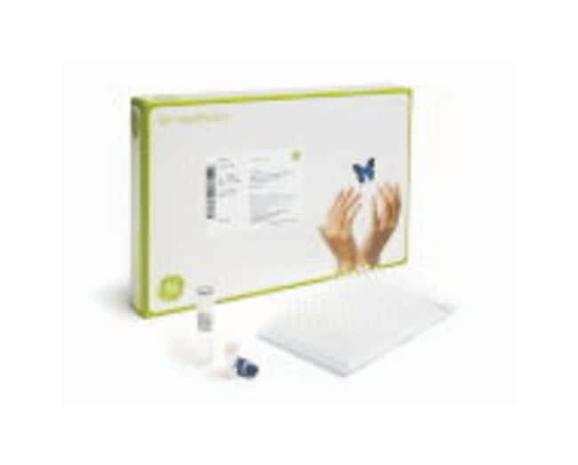 GE Healthcare illustra Ready-To-Go GenomiPhi HY DNA Amplification Kit Ready