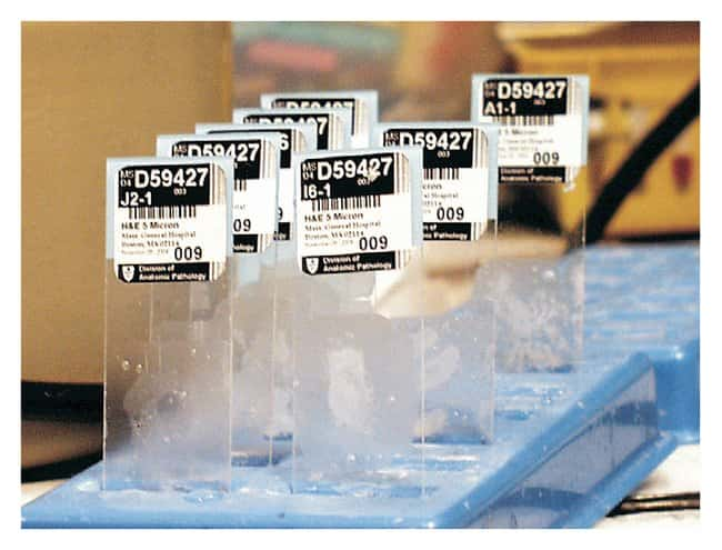 PDC Healthcare TimeMed StainerShield Slide Labels Label size: 0.88 x 0.88
