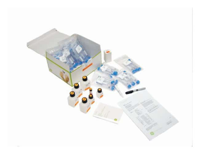 Cytiva Formerly Ge Healthcare Life Sciences Illustra Rnaspin Midi Isolation Kit Rna Isolation Kit Dna Extraction And Purification Fisher Scientific