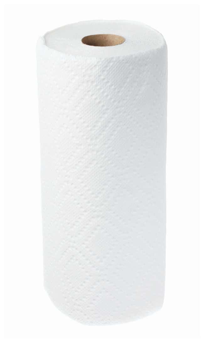 Fisher Science Education Paper Towel Roll TowelTeaching Supplies