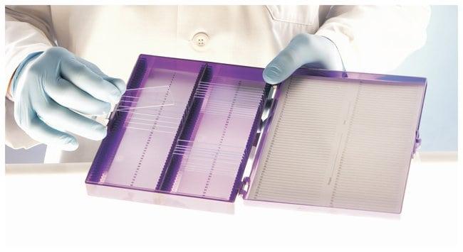 heathrow scientific true north freezer slide box holds 100 slides