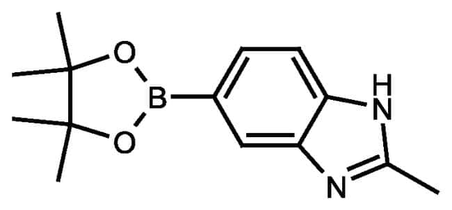 2-Methyl-1H-benzimidazole-5-boronic acid pinacol ester, 97%, ACROS Organics™