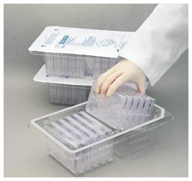 Falcon™ Plates in Ready-Stack Packaging 24-well; Surface area: 2.0cm2; Working vol.: 0.8 to 1mL; 10 trays Products