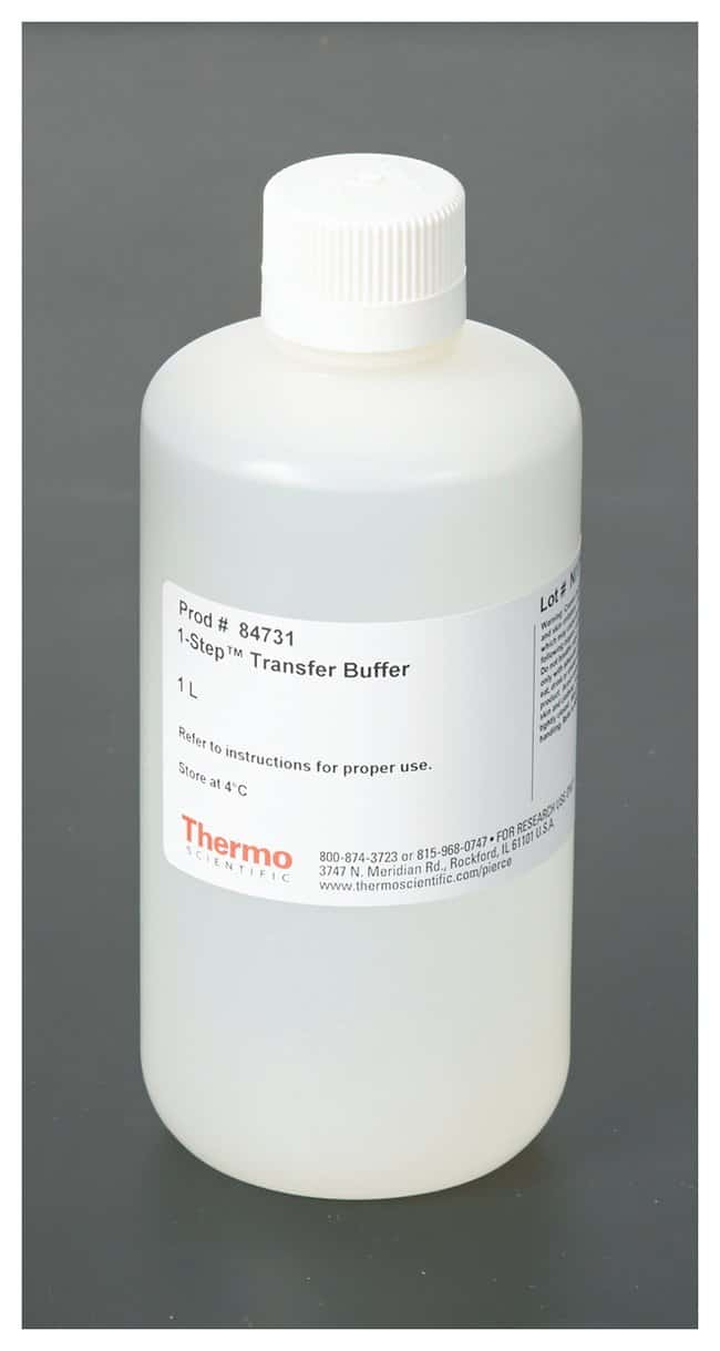 Thermo Scientific™ Pierce™ 1-Step Transfer Buffer