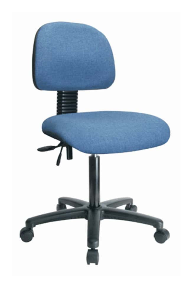 Fisherbrand™ Computer Task Chair
