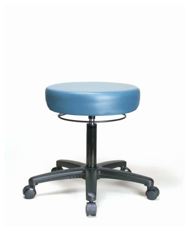 Fisherbrand Vinyl Stool With Casters