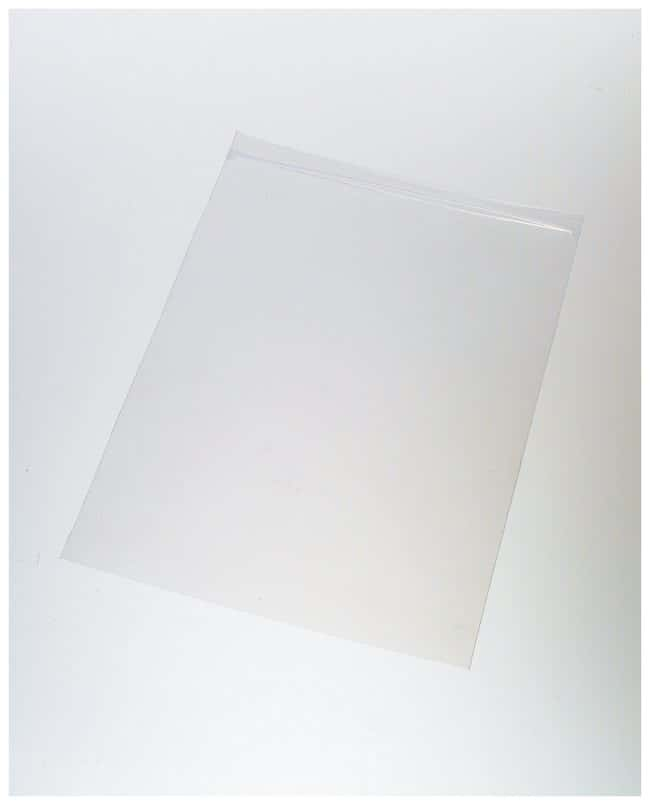 Qorpak 4mil Clear LDPE Zip Bags:Testing and Filtration:Food and Beverage