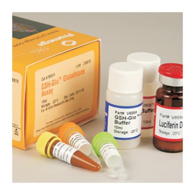 PromegaGSH-Glo™ Glutathione Assay