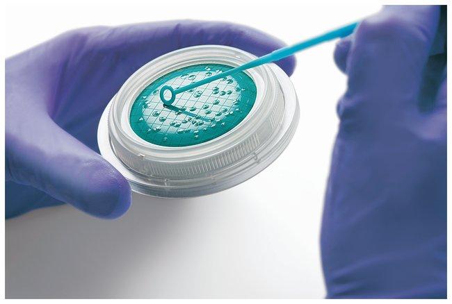 Sartorius Microsart Media TSA; Target microorganisms: total count:Cell