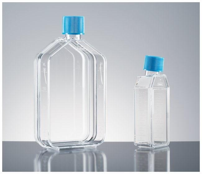 Corning™Primaria™ Flaschen für Gewebekulturen: Schalen und Flaschen für Zellkulturen Cell Culture