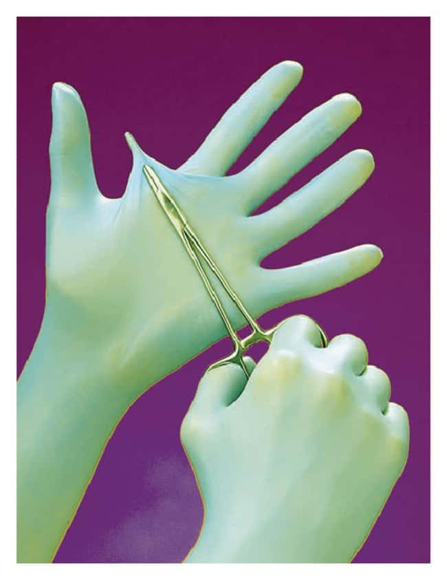 Fisherbrand™ Powder-Free Nitrile Gloves with Aloe