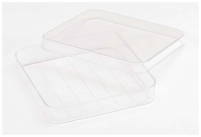Fisherbrand™Petri Dishes Specialty