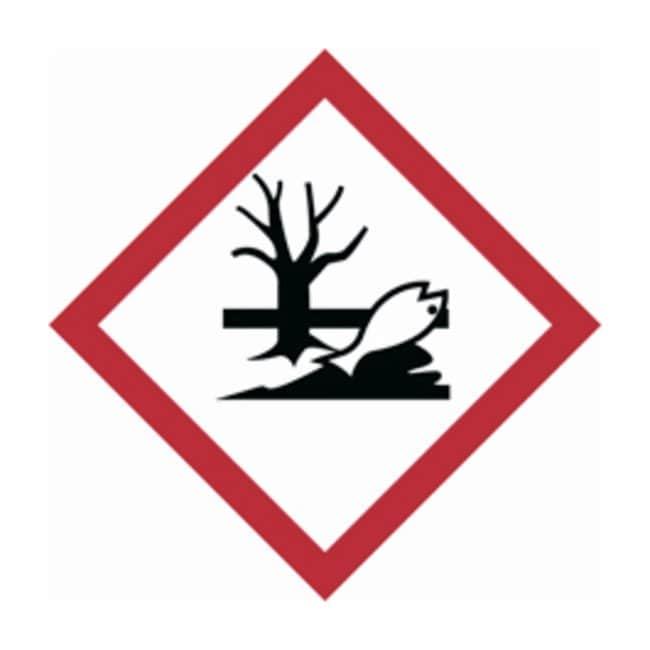 Brady Globally Harmonized System (GHS) Environmental Picto Labels :Gloves,