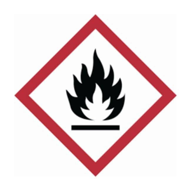 Brady Globally Harmonized System (GHS) Flammable Picto Labels :Gloves,