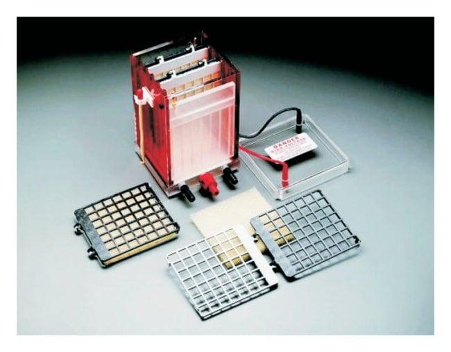 GE Healthcare TE 22 Mini Tank Transfer Unit  TE 22 Mini Tank Transfer Unit:Electrophoresis,