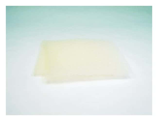 GE Healthcare Cassette foam sponge  Thick: 3mm (1/8 in.):Electrophoresis,