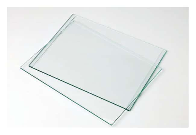 Image result for glass plates in lab