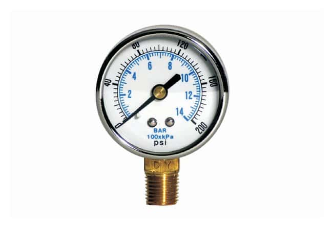 Bullard™ Free-Air™ ADP20 Air Driven Pump Accessory, Pressure Gauge