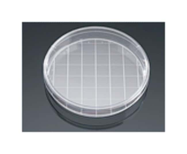 Corning BioCoat Laminin TC-treated Culture Dishes:Cell Culture:Cell Dividers,