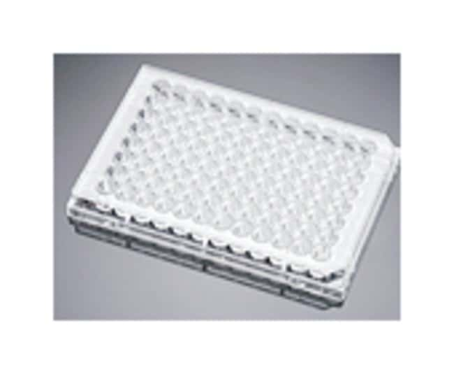 Corning™ BioCoat™ 96-Well, Collagen Type I-Treated, Flat-Bottom Microplate Clear; 50/Cs; 96-well Corning™ BioCoat™ 96-Well, Collagen Type I-Treated, Flat-Bottom Microplate