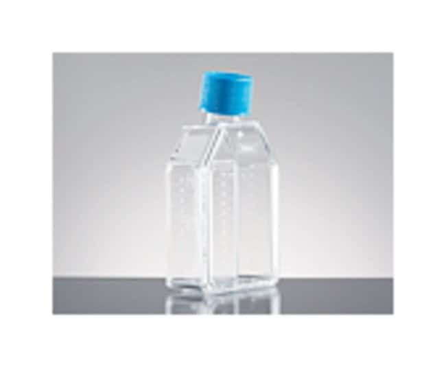 Corning BioCoat Fibronectin Rectangular Culture Flask:Dishes, Plates and
