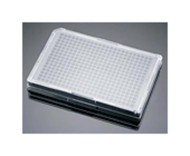 Corning™BioCoat™ 384-Well, Poly-D Lysine-Treated, Flat-Bottom Microplate Negro y transparente; 5/caja; 384 pocillos Corning™BioCoat™ 384-Well, Poly-D Lysine-Treated, Flat-Bottom Microplate