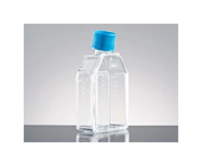 Corning BioCoat Poly-D-Lysine Vented Cap Flasks :Dishes, Plates and Flasks:Flasks