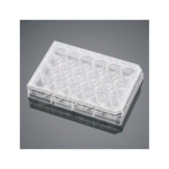 Corning™Fibronectina BioCoat™, inserto de cultivo de células humanas Fibronectin Permeable Supports Corning™Fibronectina BioCoat™, inserto de cultivo de células humanas