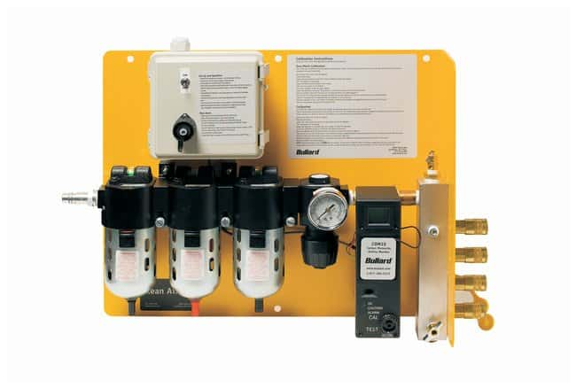 Bullard™CAB Series Fixed Breathing Air Filtration & CO Monitoring, Two to Four Worker System
