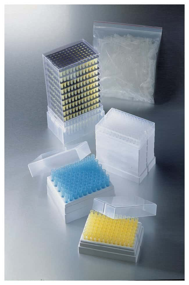 Corning™ Universal Fit Pipet Tips: Racked, Nonsterile: Universal Pipette Tips Pipette Tips and Racks