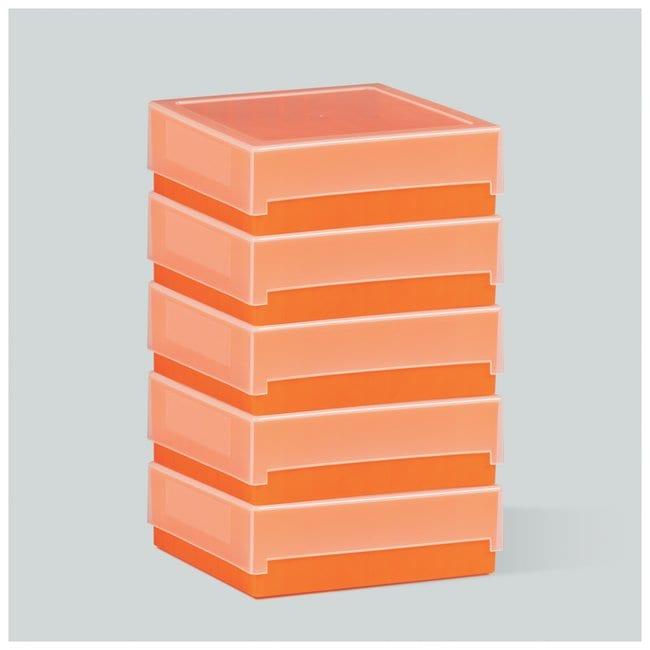 Fisherbrand™81-Place Polypropylene Cryo Storage Boxes