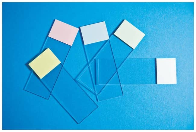 Fisherbrand Selectfrost Microscope Slides :BioPharmaceutical Production:Production