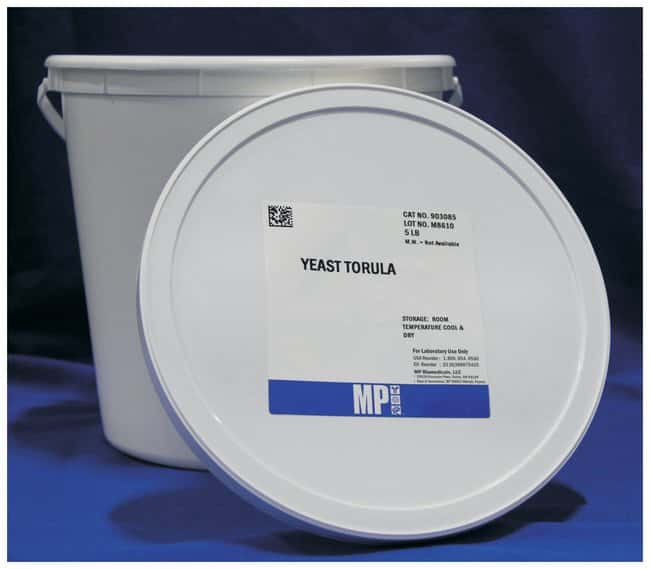 MP Biomedicals™ Yeast, Torula