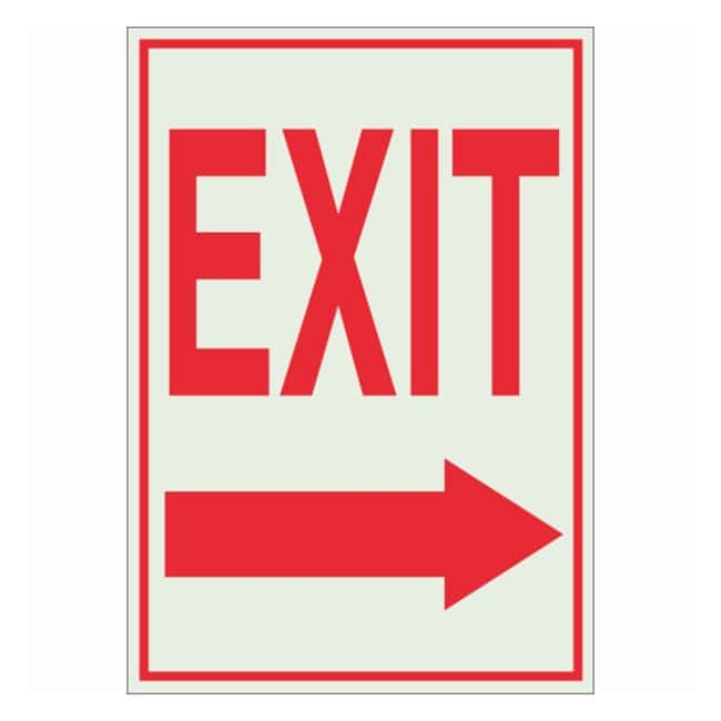 Brady BradyGlo Glow-in-the-Dark Exit and Directional Sign: EXIT (w/Picto)